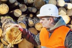 Υλοτόμος στο δάσος Στοκ φωτογραφία με δικαίωμα ελεύθερης χρήσης