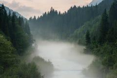 Υδρονέφωση επάνω από τον ποταμό και το δάσος Στοκ εικόνα με δικαίωμα ελεύθερης χρήσης