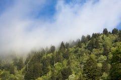 Υδρονέφωση πέρα από τα μεγάλα καπνώδη βουνά Στοκ Εικόνες