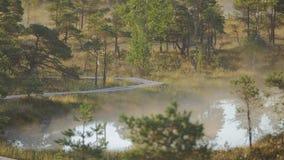 Υδρονέφωση που αυξάνεται από μια λίμνη σε ένα έλος κατά τη διάρκεια της ανατολής φιλμ μικρού μήκους