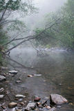 Υδρονέφωση που αυξάνεται πέρα από έναν ακόμα αυστραλιανό ποταμό Στοκ Εικόνες