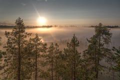 Υδρονέφωση πρωινού Στοκ Φωτογραφία