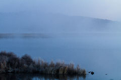 Υδρονέφωση της λίμνης στα ξημερώματα Στοκ εικόνες με δικαίωμα ελεύθερης χρήσης