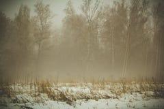 Υδρονέφωση το χειμώνα στα λειτουργώντας ικριώματα Στοκ Εικόνες