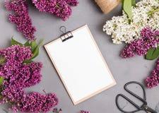 Φάκελος με το κενό έγγραφο για το γκρίζο υπόβαθρο με τα ιώδη λουλούδια στοκ εικόνες