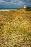 Φάρος, Νέα Ζηλανδία Στοκ εικόνες με δικαίωμα ελεύθερης χρήσης