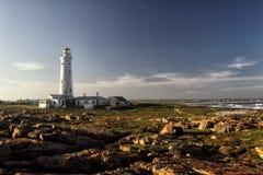 Φάρος σημείου σφραγίδων στο ακρωτήριο ST Francis, Νότια Αφρική Στοκ Εικόνες