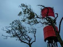 Φάρος στον οβελό Curonian στοκ φωτογραφία με δικαίωμα ελεύθερης χρήσης