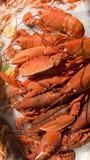 φάτε τα θαλασσινά Στοκ Εικόνες