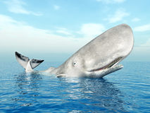 Φάλαινα σπέρματος Στοκ φωτογραφία με δικαίωμα ελεύθερης χρήσης