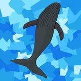 Φάλαινα Διανυσματική απεικόνιση