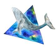 Φάλαινα Watercolor στο διαστημικό τρίγωνο Στοκ εικόνες με δικαίωμα ελεύθερης χρήσης