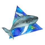 Φάλαινα Watercolor στο διαστημικό τρίγωνο Στοκ Εικόνα