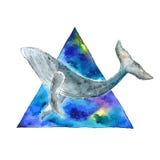 Φάλαινα Watercolor στο διαστημικό τρίγωνο Στοκ εικόνα με δικαίωμα ελεύθερης χρήσης