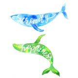Φάλαινες με την ηρεμία και την ευτυχία εγγραφής διανυσματική απεικόνιση