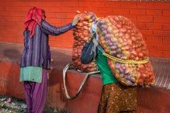 Φέρνοντας πατάτα γυναικών στοκ εικόνα με δικαίωμα ελεύθερης χρήσης