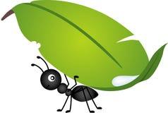 Φέρνοντας φύλλο μυρμηγκιών ελεύθερη απεικόνιση δικαιώματος