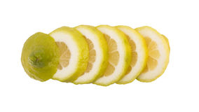 φέτα λεμονιών στοκ εικόνα με δικαίωμα ελεύθερης χρήσης