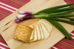 φέτα σλοβάκικα τυριών ostiepok Στοκ Εικόνες