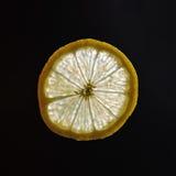 Φέτα του λεμονιού στο backlight Στοκ Εικόνα