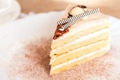 Φέτα του κέικ Στοκ Εικόνα