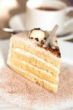 Φέτα του κέικ Στοκ Εικόνες