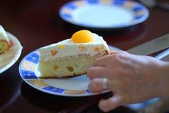 Φέτα του κέικ Στοκ εικόνες με δικαίωμα ελεύθερης χρήσης