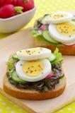 Φέτες αυγών σε ολόκληρο το ψωμί σίτου Στοκ εικόνα με δικαίωμα ελεύθερης χρήσης