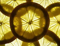 Φέτες λεμονιών στοκ φωτογραφία