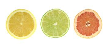 Φέτες εσπεριδοειδών - λεμόνι, ασβέστης, γκρέιπφρουτ Χρωματισμένο σύνολο που απομονώνεται στο άσπρο υπόβαθρο Στοκ φωτογραφία με δικαίωμα ελεύθερης χρήσης