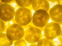 Φέτες μπανανών αναμμένες από κάτω από Στοκ εικόνες με δικαίωμα ελεύθερης χρήσης