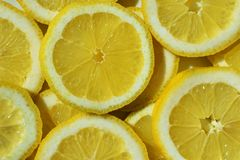 Φέτες του λεμονιού στοκ φωτογραφία με δικαίωμα ελεύθερης χρήσης