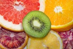 Φέτες OM εσπεριδοειδών το πιάτο Στοκ φωτογραφίες με δικαίωμα ελεύθερης χρήσης