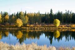 φίδι ποταμών φθινοπώρου Στοκ Φωτογραφία