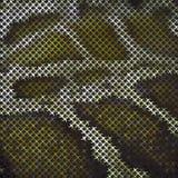 Φίδι Skin_2 μωσαϊκών Στοκ φωτογραφίες με δικαίωμα ελεύθερης χρήσης