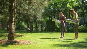 Φίλαθλες γυναίκες με τα χαλιά άσκησης που πηγαίνουν για την ικανότητα απόθεμα βίντεο