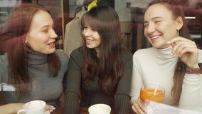 Φίλες γυναικών σε έναν καφέ απόθεμα βίντεο