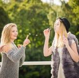 Φίλοι γυναικών που φυσούν τις φυσαλίδες σαπουνιών στοκ εικόνα με δικαίωμα ελεύθερης χρήσης