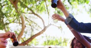 Φίλοι που ψήνουν μια μπύρα στο πάρκο 4k φιλμ μικρού μήκους