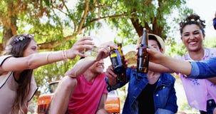 Φίλοι που ψήνουν τα μπουκάλια μπύρας στο πάρκο 4k απόθεμα βίντεο