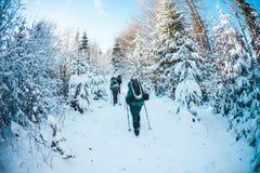 Φίλοι στη χειμερινή οδοιπορία στα βουνά στοκ εικόνα