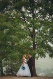 Φίλημα γαμήλιων ζευγών κάτω από το δέντρο Στοκ εικόνες με δικαίωμα ελεύθερης χρήσης