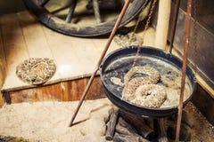 Φίδια κουδουνισμάτων Στοκ εικόνες με δικαίωμα ελεύθερης χρήσης