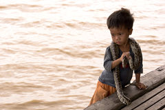 φίδι εκτελεστών παιδιών Στοκ Εικόνες