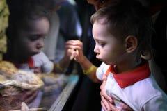 Φίδι οικογενειακής προσοχής Στοκ Φωτογραφίες