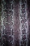Φίδι λωρίδων υφάσματος τυπωμένων υλών για το υπόβαθρο Στοκ εικόνα με δικαίωμα ελεύθερης χρήσης