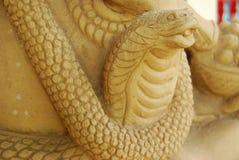 Φίδι. Στοκ Εικόνες