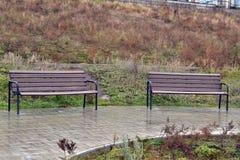 Φίλοι αναψυχής πάρκων φθινοπώρου Στοκ Φωτογραφίες