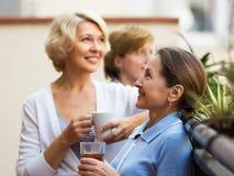 Φίλοι γυναικών στο θερινό πεζούλι Στοκ εικόνες με δικαίωμα ελεύθερης χρήσης