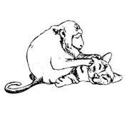 Φίλοι - ο πίθηκος και η γάτα (αφαίρεση) Στοκ φωτογραφίες με δικαίωμα ελεύθερης χρήσης